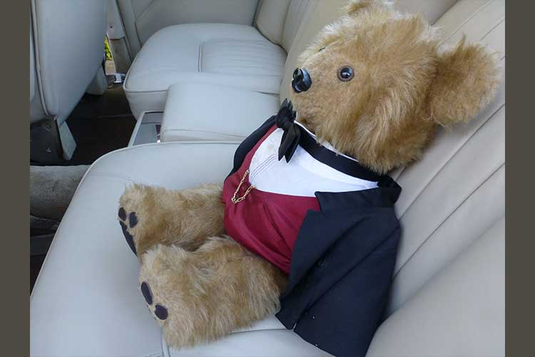 1970 Rover 3.5 Coupe reupholstered, back seat with teddy